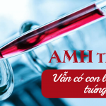 10 thông tin bất ngờ về dự trữ buồng trứng thấp (AMH thấp)