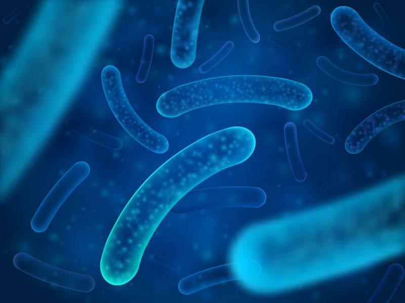 Nhiễm khuẩn hậu sản