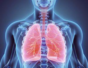 Khoa Nội hô hấp