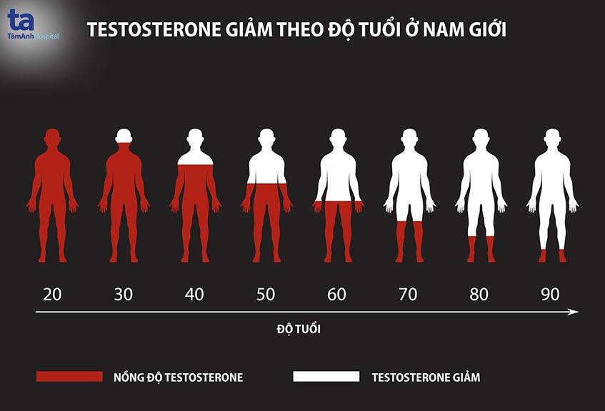 nong do testosterone giam
